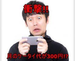 格安SIMに変えたら月のスマホ料金が302円になった!画像もあるよ!e